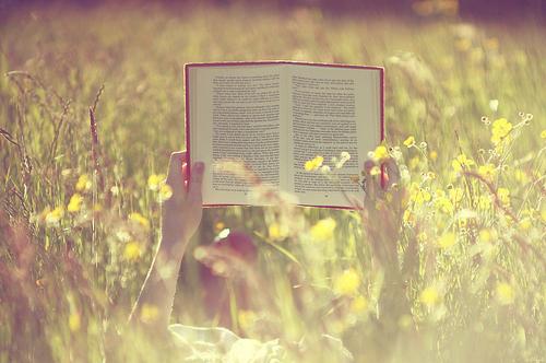 Hayata Meydan Okuyorum